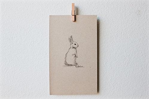 Bunny 03