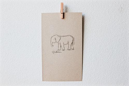 Adventuring Elephant 03