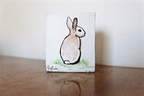 Sitting Rabbit 01