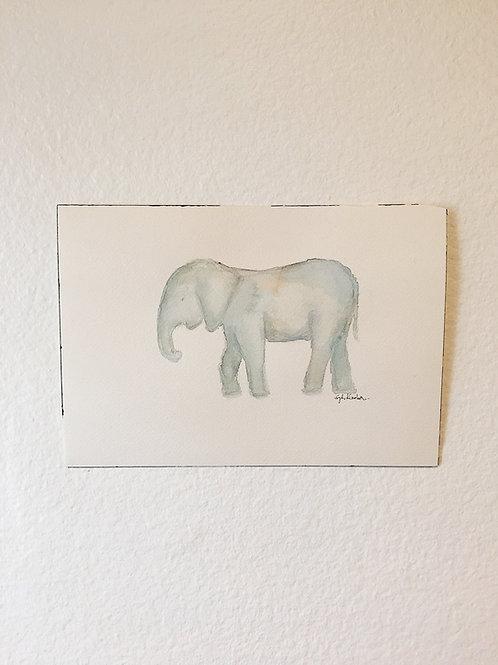 Adventuring Elephant 01