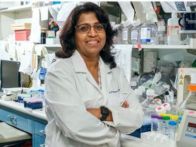 Brainstem neurons are regulators of inflammation