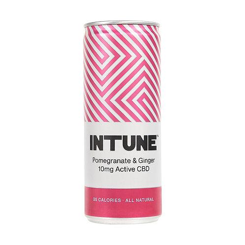 'Pomegranate & Ginger' - INTUNE - Botanical CBD Soft Drink