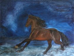 Free gallop, 70x90 cm