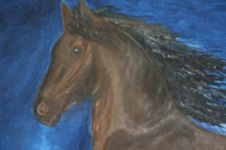 Free gallop, detail view 1.