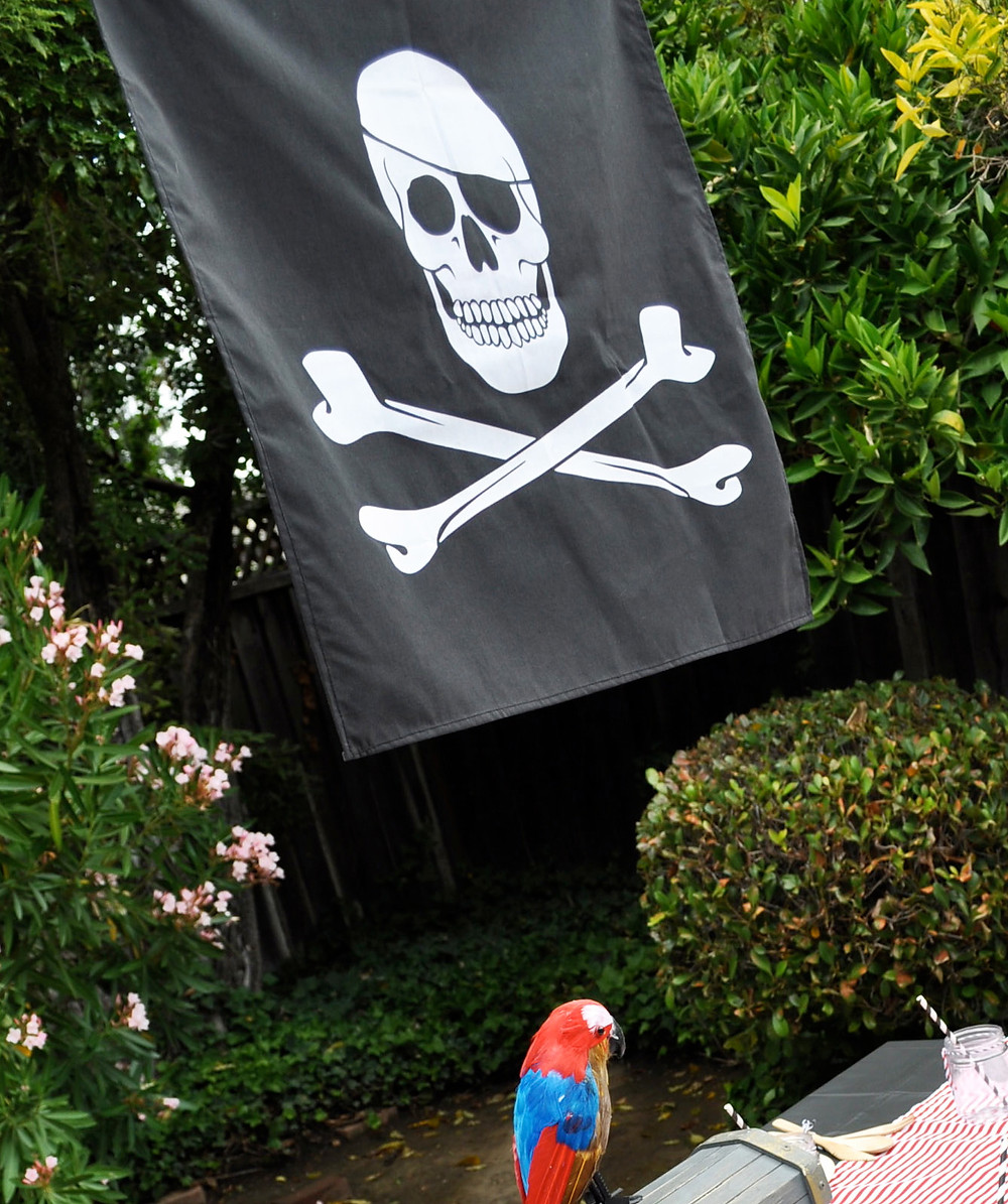 Pirate25.jpg