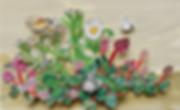 スクリーンショット 2019-01-22 18.06.56.png