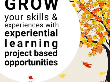 Grow your skills & gain experience with an experiential learning project based opportunity