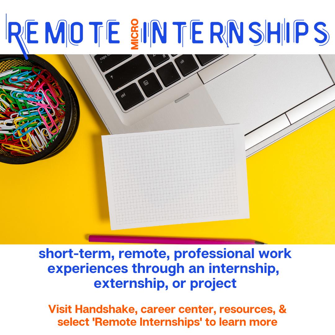 Remote Micro Internships (1)