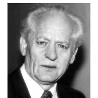 Jerzy Domin