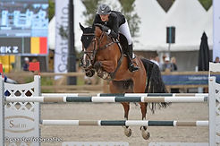 Orphe in the 1m45 ranking class at csi__