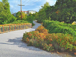 FH-South Bay Trail Rain Garden#.jpg
