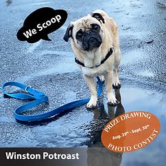 FB_Winston Potroast-COB.png
