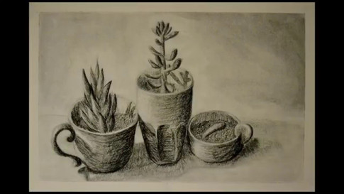 A time lapse of an hour-long drawing of succulents. 2017.