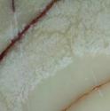 white-onyx-tiles-01.png