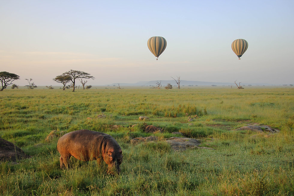 Home Page Section 2 Africa with Hot Air