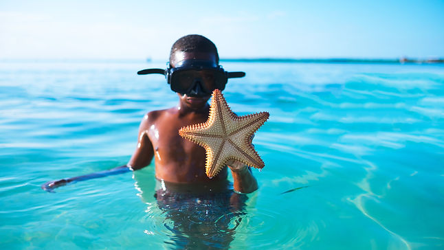 boywithstarfish.jpg