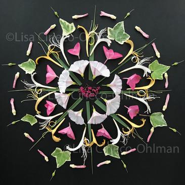 Flower Mandala © Lisa Cirieco-Ohlman 2018