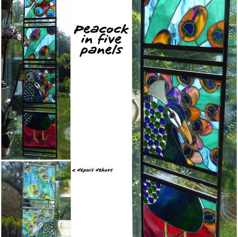 Stained Glass - Peacock ©2015 Lisa Cirieco