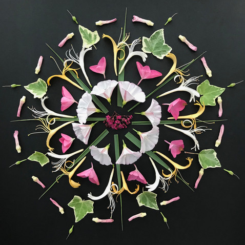Flower Mandala © Lisa Cirieco 2018