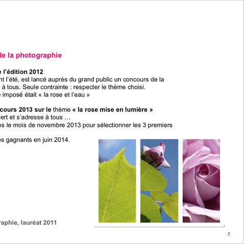 1st prize for the photo competition 2011