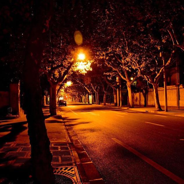 Good night Shanghai....jpg