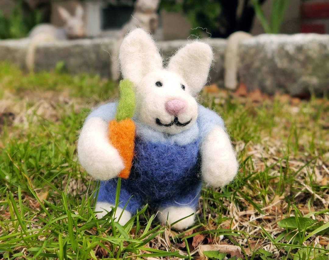 Farmer bunny enjoying outdoors