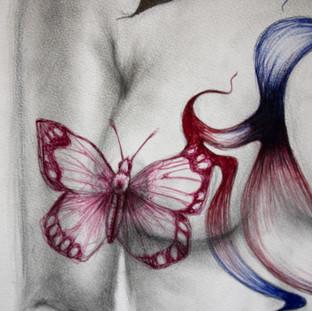 Birds Butterflies & Bottles