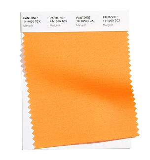 Pantone-FCTR-New-York-Spring-Summer-2021