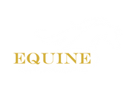 wit logo Equine Business Coaching.png