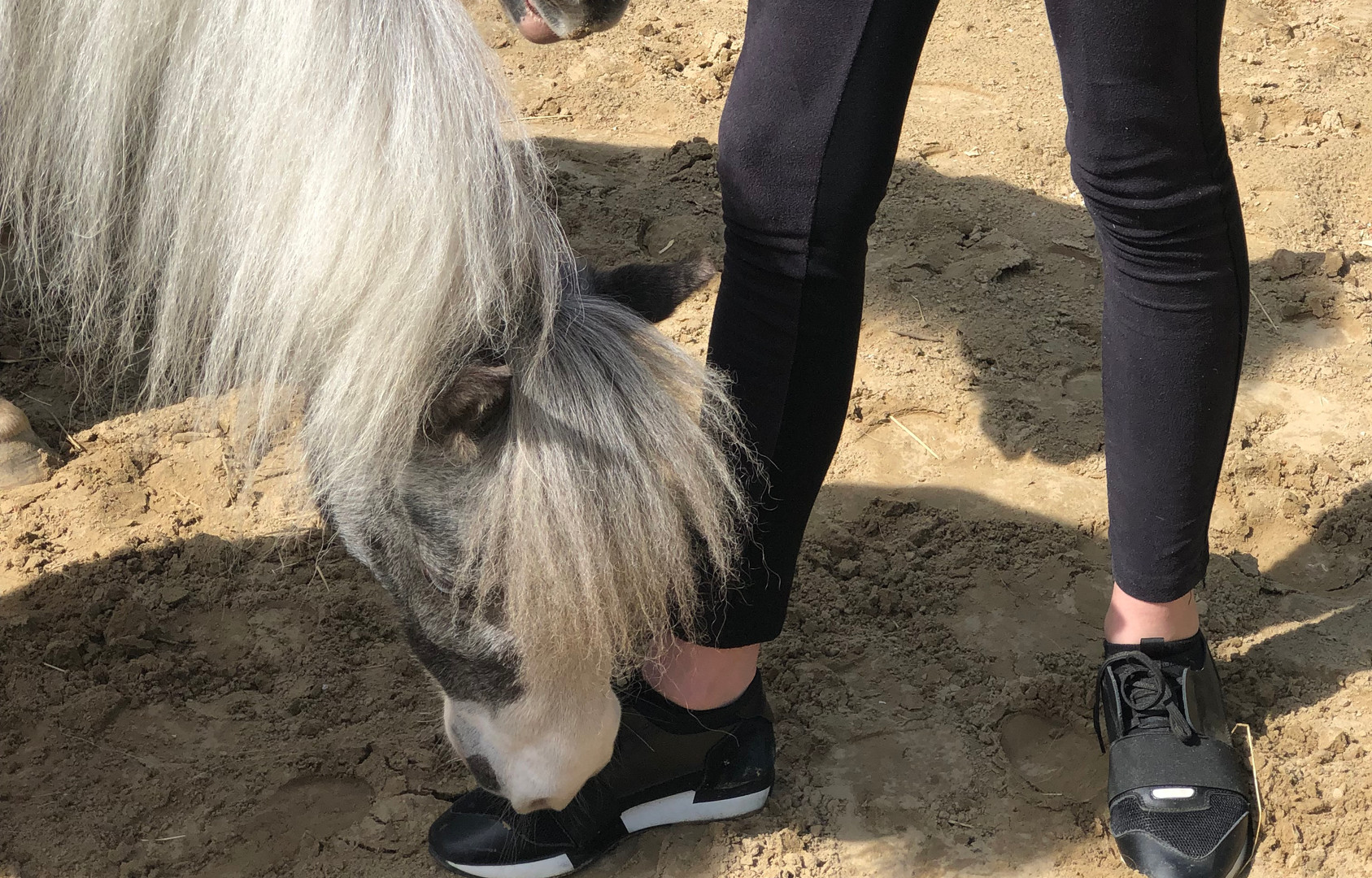hoe stevig sta jij in je schoenen?