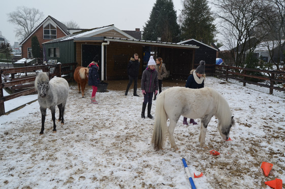 Kind & Paard werken samen