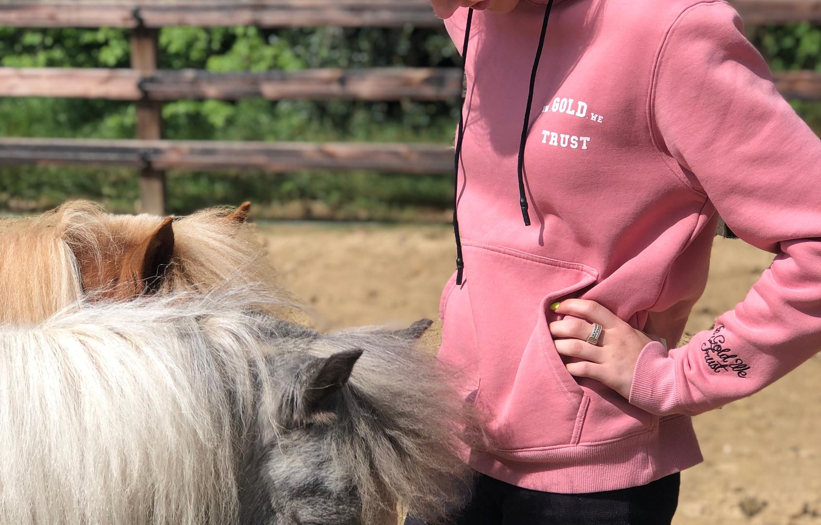 Kinder- en tienercoaching met paarden