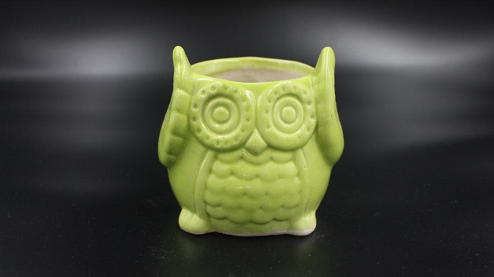 Owl Planter (Celery Green)