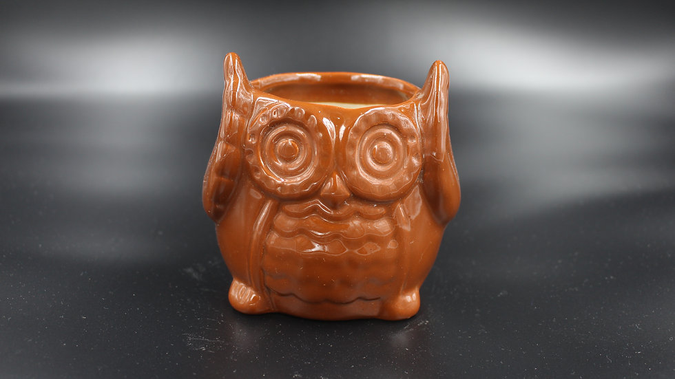 Owl Planter (Oak Brown)