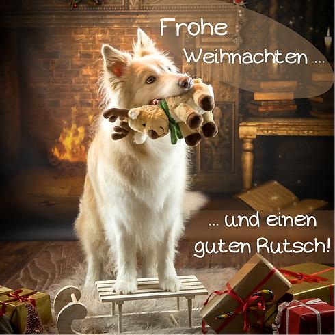 Frohe Weihnachten.....png
