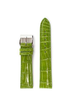 Green glossy alligator
