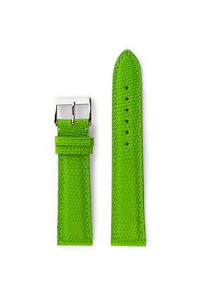 Light Green Lizard - Mat