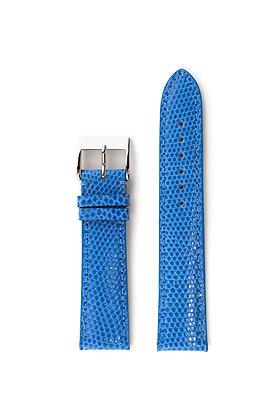 Light blue glossy lizard