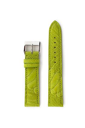 Light Green Ostrich Foot - Mat
