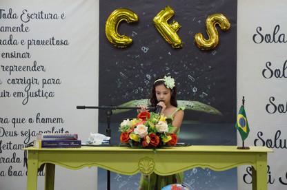 CFS3B_4.JPG