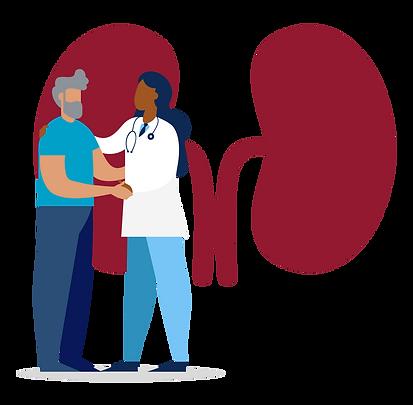 Kidney-Health-GFX.png