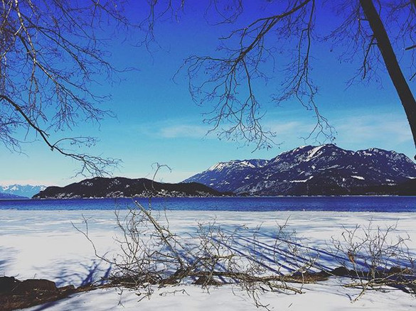 Harrison Lake Field Recording