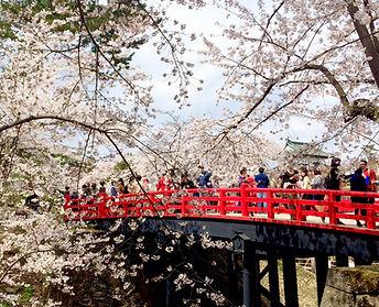 弘前城公園2.jpg