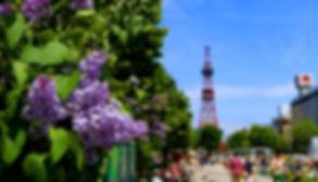大通公園紫丁香祭.jpg