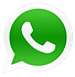 ICONE WHATSAPP PNG.png