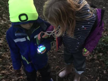 Magic torches, glowing butterflies and light-up trails in the woods