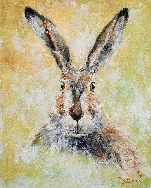 Hare, Signed Giclée Print