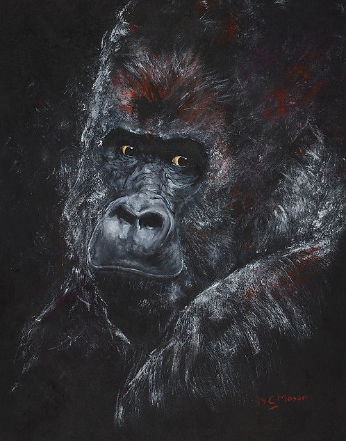 Gorilla, Signed Giclée Print