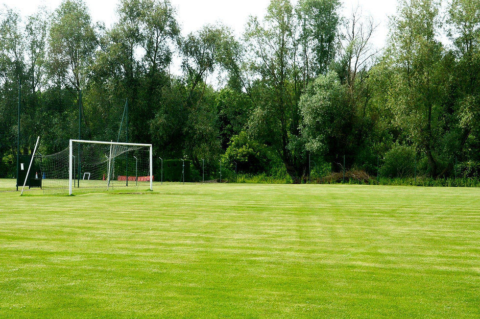 photo terrain de football 1.jpg