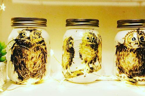 Owl trio 0.5L jars